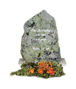 Fjellstein og naturform